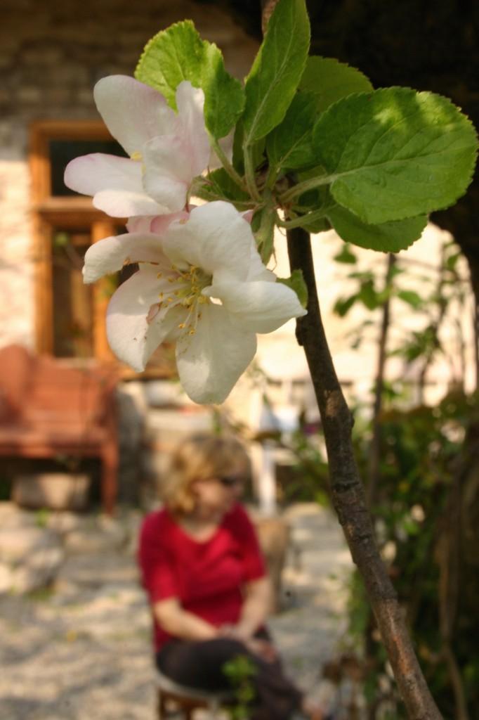 2011 április Húsvét 044